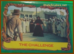 The IHateSnakes.com Collection - #0861